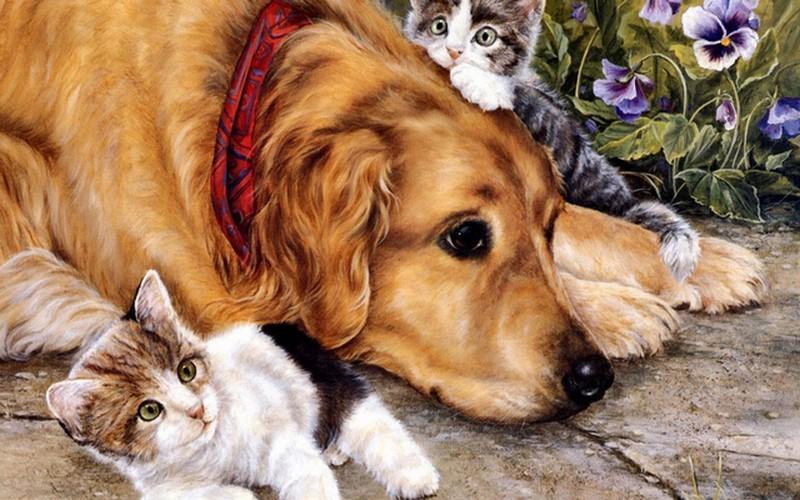 Красивые открытки со щенками, открытка
